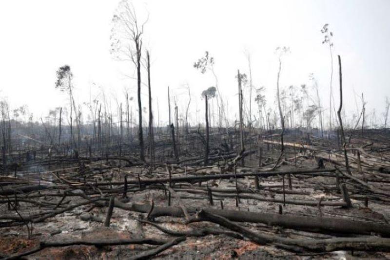 Αποζημίωση λόγω φυσικών καταστροφών